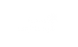 basic-light